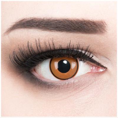 Citrus Kontaktlinsen