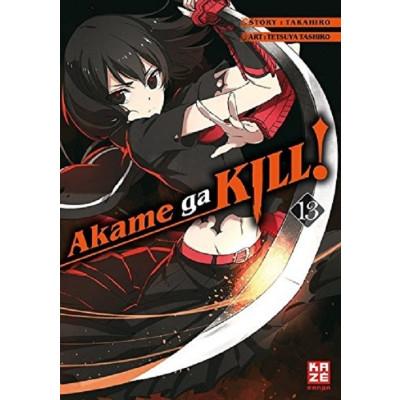 Akame ga KILL! 13 Manga
