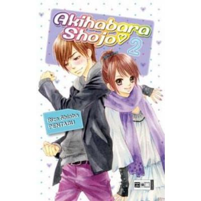 Akihabara Shojo  2 Manga