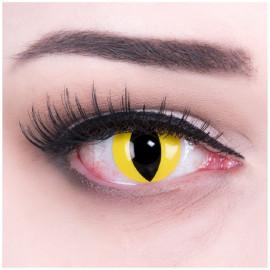 Cat Eye Kontaktlinsen