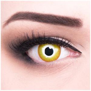 Sunburst Kontaktlinsen