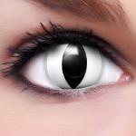 White Cat Kontaktlinsen